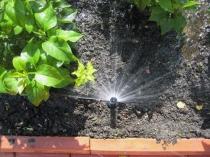 Установка автоматического орошения растений в теплице
