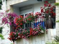 Цветы в подвесных пластиковых горшках на открытом балконе