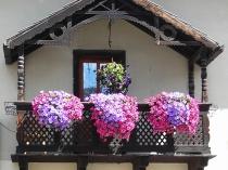 Оформление балкона однотипными цветочными композициями