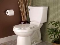 Как украсить и оформить туалет в эко стиле