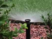 Полив тепличных растений посредством орошения