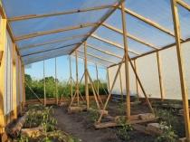 Установка опорных стоек для усиления конструкции деревянной теплицы