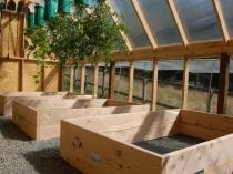 Внутреннее обустройство большой деревянной теплицы