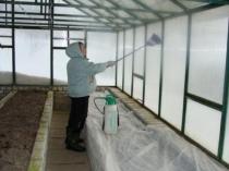 Очистка стенок теплицы при подготовке к зиме