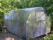 Пленочная теплица с ломаной конструкцией крыши