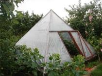 Пленочная теплица пирамида на дачном участке