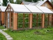 Основательная постройка дачной теплицы из кирпича и оконных рам