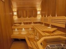 вагонка в интерьере бани