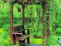 Зеленое оформление маленькой беседки из дерева