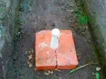 Серная шашка для окуривания земли в теплице