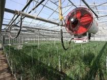 Система отопления и вентиляции воздуха в зимней теплице