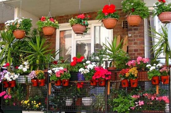 Подвесные горшки и ящики для цветов