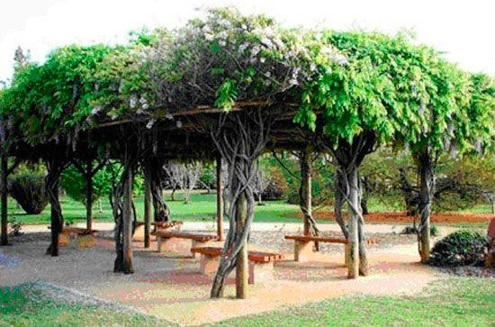 Размещение беседки между деревьями