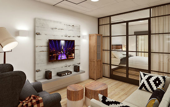 Разделение пространства гостиной-спальни при помощи раздвижной перегородки