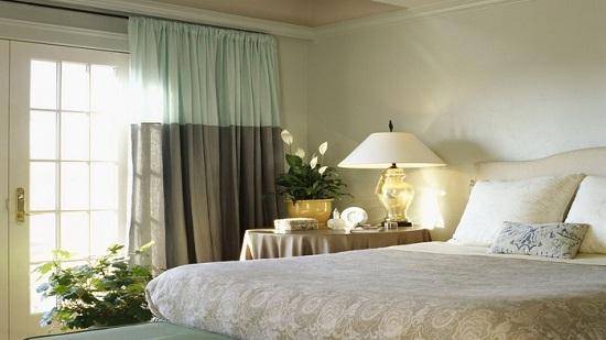 Цветы на столике и полу в интерьере спальни