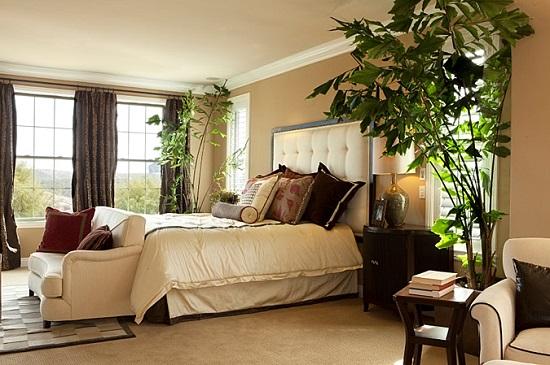 Декорирование спальни высокими растениями в кадках