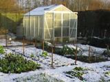Подготовленная к зиме теплица из поликарбоната