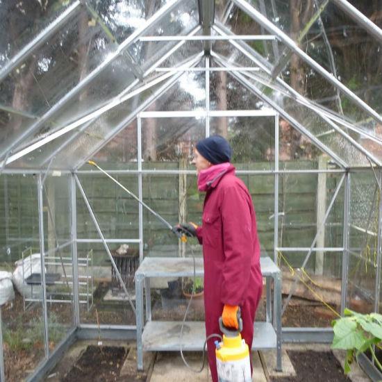 Процесс обработки поликарбонатной теплицы медным купоросом