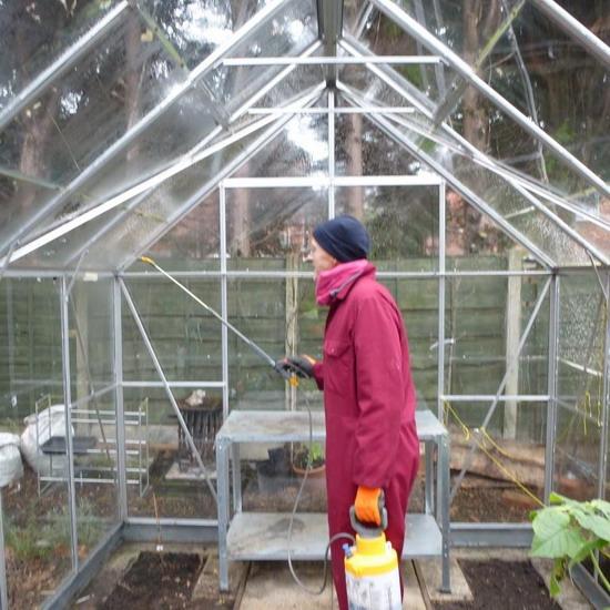 Опрыскивание теплицы дезинфицирующим раствором во время подготовки к зиме