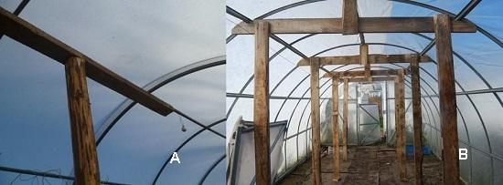 Подпорки из дерева для укрепления зимней теплицы