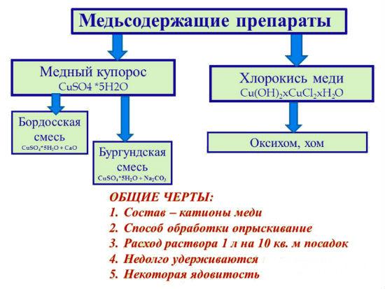 Схема-подсказка по обработке теплицы медным купоросом